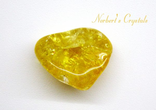 citrin-2