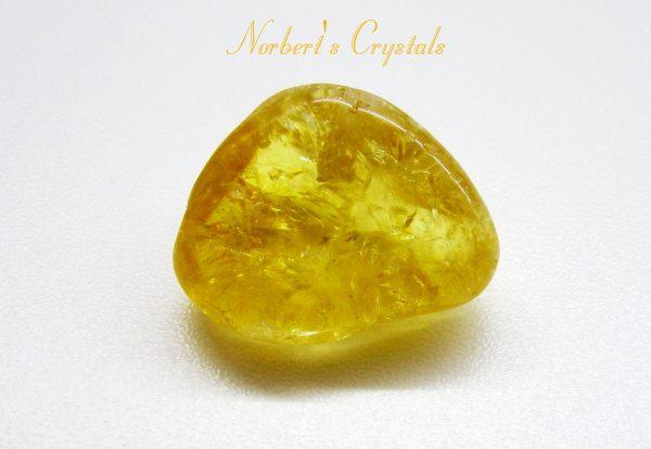 citrin-3